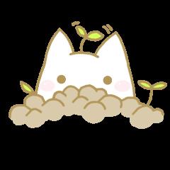 Gaia's cutey