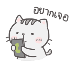 Mr. bear and his cutie cat 2 sticker #7873141