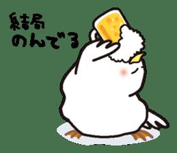 "White chicken ""DA where liquor is good"" sticker #7907462"