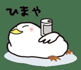 "White chicken ""DA where liquor is good"" sticker #7907465"