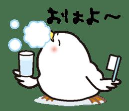 "White chicken ""DA where liquor is good"" sticker #7907498"