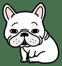 French bulldog Gomaco and Hana 2 English sticker #7923704
