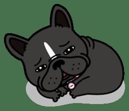 French bulldog Gomaco and Hana 2 English sticker #7923726