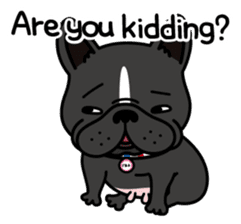 French bulldog Gomaco and Hana 2 English sticker #7923728