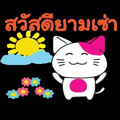 CuteCat of Thai-Esan
