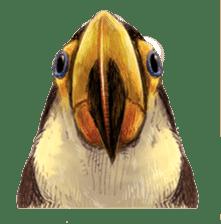 Happy Toco Toucan sticker #7986763