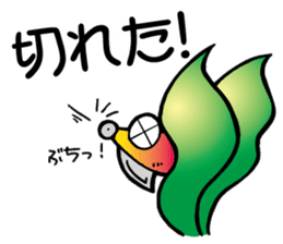 oval squid (aori ika) sticker no.2 sticker #7988157