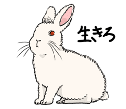 vi-vivid rabbits! sticker #8030163