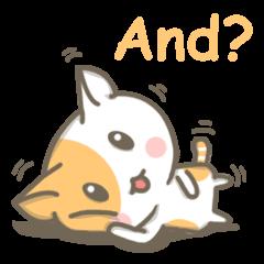 Tangerine Kitten