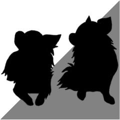 Chihuahua's silhouette