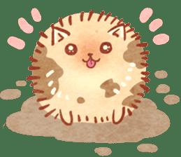 Cute fluffy Pomeranian sticker #8154023