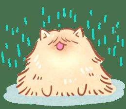 Cute fluffy Pomeranian sticker #8154025