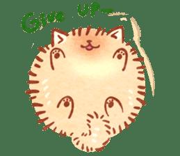 Cute fluffy Pomeranian sticker #8154028