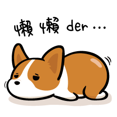 Corgi Dog KaKa - Daily Life
