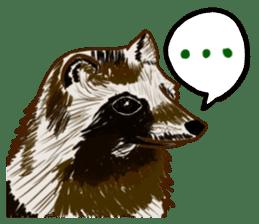 Fox and Raccoon dog 2 sticker #8191291
