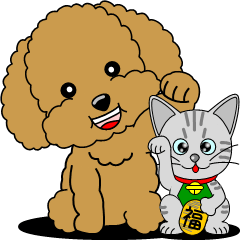 Polite language of Toy Poodle