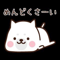 Beware of the dog, Haku's ordinary days.