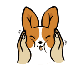Corgi Dog KaKa - Cutie sticker #8253479