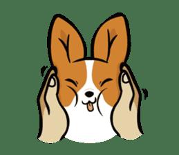 Corgi Dog KaKa - Cutie sticker #8253479