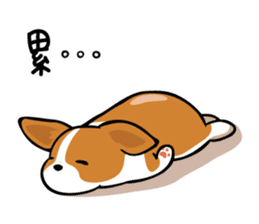 Corgi Dog KaKa - Cutie sticker #8253481