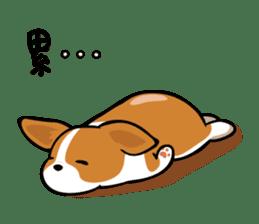 Corgi Dog KaKa - Cutie sticker #8253481