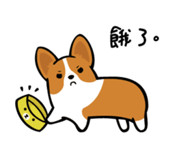 Corgi Dog KaKa - Cutie sticker #8253488