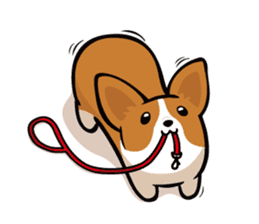 Corgi Dog KaKa - Cutie sticker #8253490