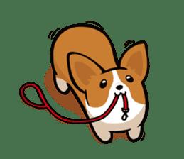 Corgi Dog KaKa - Cutie sticker #8253490