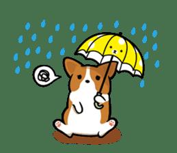 Corgi Dog KaKa - Cutie sticker #8253493