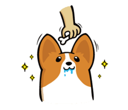 Corgi Dog KaKa - Cutie sticker #8253494