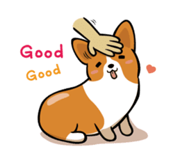 Corgi Dog KaKa - Cutie sticker #8253501