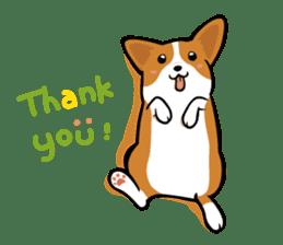 Corgi Dog KaKa - Cutie sticker #8253512