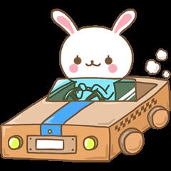 Rabbit Wonderland box 2