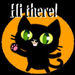 Small, obliging, black cat.