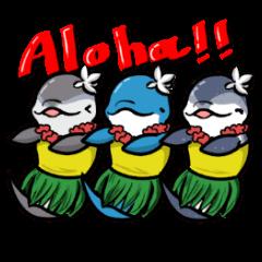 Hawaiian Ocean Life