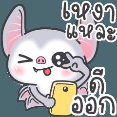 กล้วยบวชชี: ค้างคาวเกรียน
