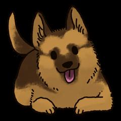 The German shepherd dog!!