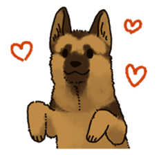 The German shepherd dog!! sticker #8352942