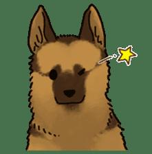 The German shepherd dog!! sticker #8352943