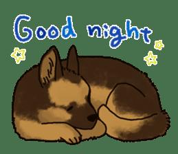 The German shepherd dog!! sticker #8352949