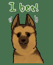 The German shepherd dog!! sticker #8352956