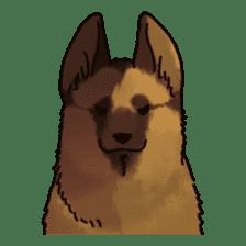 The German shepherd dog!! sticker #8352967
