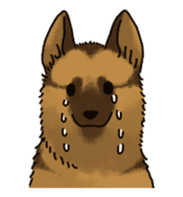 The German shepherd dog!! sticker #8352972