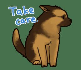 The German shepherd dog!! sticker #8352975