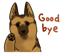 The German shepherd dog!! sticker #8352979