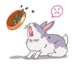 Momo the rabbit! sticker #8355905