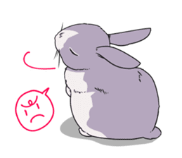 Momo the rabbit! sticker #8355906