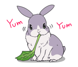 Momo the rabbit! sticker #8355918