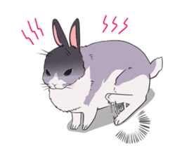 Momo the rabbit! sticker #8355923