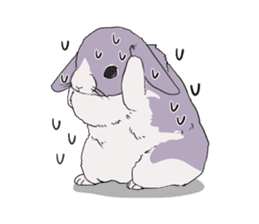 Momo the rabbit! sticker #8355924